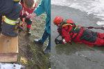 Pes propadl na Znojemsku dírou do ledové vody: Hasiči ho museli vyprostit a »rozdýchat«