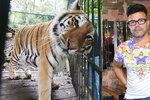Laffita prozradil, co zabilo jeho tygra! Poslali jsme ho do kafilerie, řekl pak v slzách