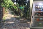 Na Kotlasce se otevřela komunitní lednice. Další vzniknou v Holešovicích a na Žižkově