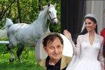 """Trapas Česka s koňským darem na královskou svatbu """"hasil"""" diplomat: Delikátní práce"""