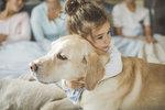 Jak vybrat psa, který bude vyhovovat celé rodině