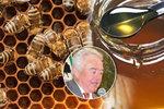 """Kvalitní med prodáváme do ciziny. Češi pak musí jíst šizené """"šmejdy"""" z Číny"""