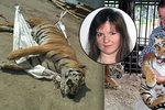 Ze zookoutku rovnou na jatka: Jak končí tygří koťata, se kterými se chodí mazlit děti?