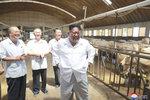 """""""Chce to víc krav,"""" rozhodl Kim Čong-un při inspekci na dobytčí farmě"""