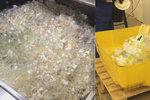 V Zoo Praha se ročně vyhodí přes milion kusů plastového nádobí. Teď ho vyrábí ze škrobu a rovnou kompostují