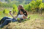 Víno u nás: Vinařské oblasti a podoblasti Moravy a Čech
