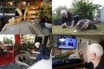 Francouz spí s aligátorem v posteli. Mezi stovkami zvířat má kobry i tarantule