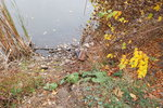 Otřesný nález v Šeberově: U rybníka ležel mrtvý pejsek! Někdo ho svázal, nacpal do batohu a zatěžkal kamenem?