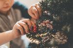Co by to bylo za Vánoce bez vánočního stromečku? Kdy vznikla tato tradice, čím se zdobil dřív a jaké ozdoby dnes najdete v obchodech?
