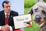 Dědictví pro zvíře i povinný úklid po svatbě: Notář zná zvláštní požadavky Čechů