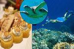 Z plískanic na skok do egyptského ráje: Podmořský život a pohoda okouzlí kdykoli