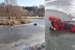 Hasiči v Sokolově zachraňovali chlapce (10) ze zamrzlého rybníka. Jeden z nich sám skončil pod ledem!