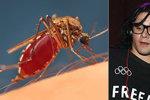 V Česku řádí smrtelně nebezpeční komáři: Vědci našli šokující metodu, jak odradit jejich příbuzné!