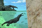 Nečekaný objev v Peru: Našli čtyřnohou velrybu!