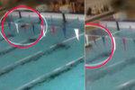Hrůza v královéhradeckém bazénu: Žena se topila, lidé dál plavali kolem ní
