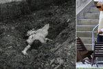 Pedofilní vrah před 30 lety zavraždil Haničku (†11): Teď hrozilo, že ho pustí z ústavu