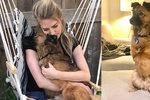 Zfetovaný majitel uřízl psovi přední tlapky: True našel štěstí na druhém konci planety
