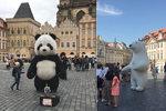 """Zákaz obřích pand i dělání bublin: Nová vyhláška omezí pouliční """"umění"""" v centru. Co v ní stojí?"""