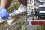 Vražda seniorů v Břeclavi: Smrt kvůli milionu? Byla to jatka, popsal svědek!