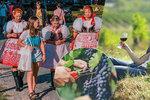 Vinobraní začíná: Velký přehled, kam se v Česku vydat za vínem! Až do října!
