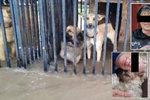 Katka, Zuzana a Zdenka se utopily při záchraně psů z útulku během povodně: Osudný telefonát