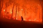 Ohnivé peklo u Sydney má na svědomí dobrovolný hasič: Založil prý až 7 požárů, aby si užil akci