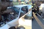Tvrdá srážka osobáku s traktorem: Chlapce (11) zachraňoval vrtulník! Pes v kufru nepřežil