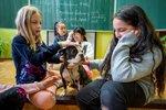 Děti pomohly opuštěným psům. K Vánocům jim předaly  tašky granulí, konzerv i hraček