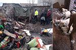Záchrana psů z pekelné osady: Vyhublá štěňata bez matky se krčila v horách odpadu