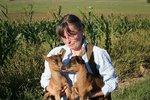Ohavnost v Brně: Někdo otrávil chovatelce jedenáct koz, devět z nich uhynulo