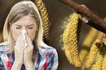 Špatná zpráva pro alergiky: Pylová sezona je tu. Začala velmi brzy, lékař řekl víc