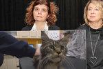 Kam mizí peníze na týraná a zubožená zvířata? Dokument šokuje odporným byznysem
