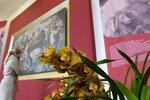 Rubens v záplavě barevných květin: Ve skleníku na Pražském hradě začala výstava Předjaří