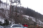 Seniora v lese na Žďársku zavalilo dřevo: Nezachránila ho ani okamžitá resuscitace