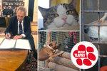 Zeman podepsal zákon tvrdě postihující tyrany zvířat. Pomohly i Blesk tlapky