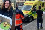 Kvůli koronaviru musela zavřít: Zlínská cukrářka rozdala 600 dobrot záchranářům!