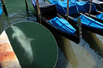 Smutné lži ohledně pandemie koronaviru: Delfíni se do Benátek nevrátili