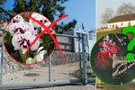 Květena v době koronaviru? Botanická zahrada v Troji zrušila oblíbenou výstavu, další je v ohrožení