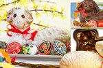 Velikonoční beránek třikrát jinak: Vyzkoušejte třeného, šlehačkového i tvarohového!