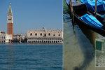 Koronavirus zachraňuje přírodu? V křišťálově čisté vodě v Benátkách se objevila vzácná medúza