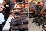 """Pečení netopýři, syroví hadi, tisíce psů: Lidé volají po zákazu """"mokrých trhů"""" v Asii"""