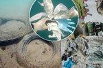 Roušky a rukavice znečišťují mořské dno: Nový druh odpadu děsí ochránce přírody