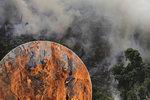 """Nemocné """"plíce planety"""": Amazonský prales mizí, letošní požáry budou horší než ty loňské"""