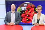 Vysílali jsme: Potraviny zdražily i o desítky procent. Kde se to zastaví a co zmizí z pultů?