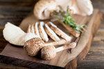 Recepty z bedel: Nejen řízky. Jak zpracovat plný košík hub?
