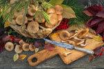 Dršťková z hub: Znáte recept z bedel, václavek nebo masáků?