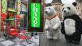 Pryč s pandami a bublináři! Magistrát a Praha 1 chce přísnější omezení pouličního umění