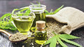 Konopí versus marihuana: Naučte se vyrobit léčivou mast!