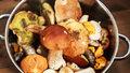 Nejlepší houbové recepty: Co uvařit z žampionů, lišek, bedel a dalších oblíbených hub?