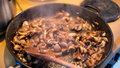 Jak udělat bedly na kmíně neboli houbové škvarky? Recept do 15 minut!